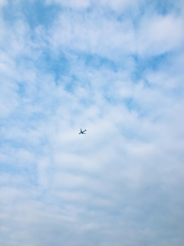 为什么在中国旅行和飞行时手机必须运行飞行模式不开会危险吗